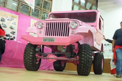 UNICO JEEP GAY DO BRASIL