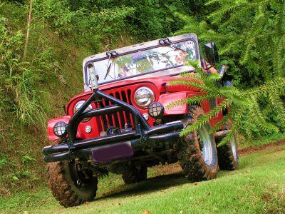 Jeep Willys Imperdível