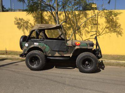 Jeep Willys lindo!