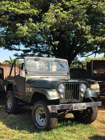 Willys Overland Ano 66